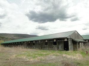 Track barns
