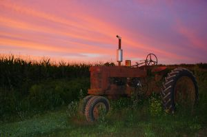 Sunset with Tractor