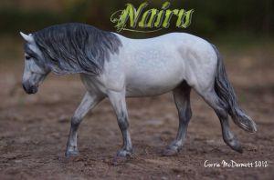 Nairn-c48.jpg
